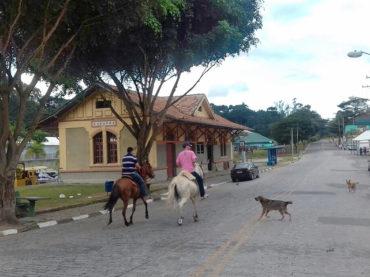 Viagem à Sabaúna